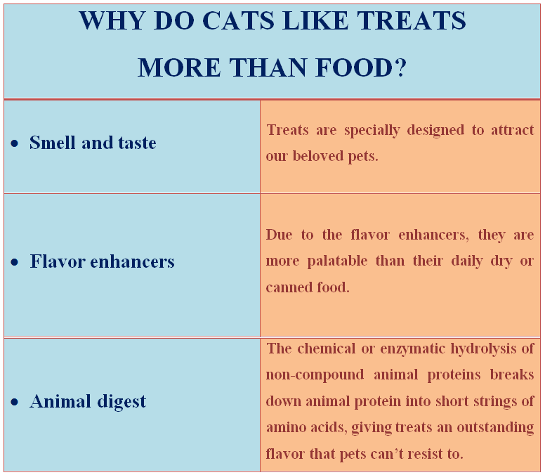 why cats like treats more them food